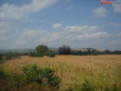 Proiecte agricole de sute de milioane de euro, ratate din cauza bancilor
