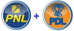Proiectul statutului PDL-PNL: Partidul va avea culorile alb, albastru si galben