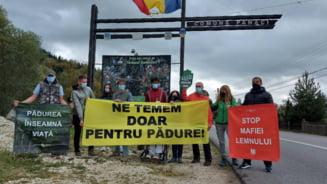 Protest al ecologiștilor la Suceava, unde un activist şi doi jurnalişti au fost bătuţi. Ce revendică manifestanții VIDEO