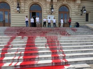 """Protest cu """"sange"""" pe scarile Facultatii de Drept din Iasi. Toader a trimis 13 angajati sa spele (Foto&Video)"""