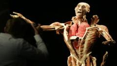 Protest fata de expozitia de trupuri umane de la Antipa: Spectacol macabru