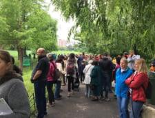 Protest in Parcul Tei din Capitala: Lacul seaca, specii protejate dispar, iar Primaria Capitalei se face ca ploua