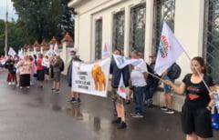 Protest la Palatul Cotroceni. Zeci de tineri cer interventia presedintelui Klaus Iohanis pentru a salva Rosia Montana VIDEO