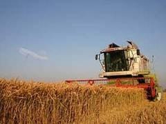 Protest masiv in Bucuresti: 10.000 de agricultori vin miercuri la Guvern
