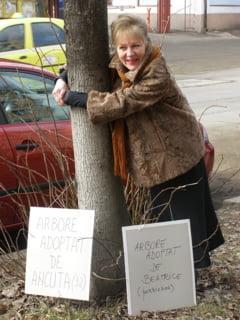 Proteste initiate de Asociatia GEC Bucovina impotriva actiunii Primariei de taiere a teilor
