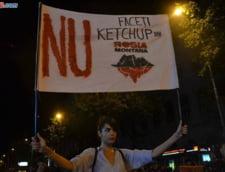 Proteste pentru Rosia Montana: Galeria Stelei vine in Piata Universitatii