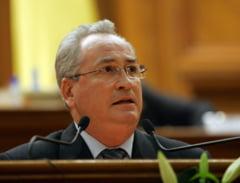 Puiu Hasotti: PSD va avea de ales intre Liviu Dragnea si Dragnea Liviu
