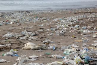 Pungile din plastic de unica folosinta au fost interzise in doua state australiene