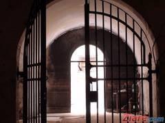 Pustii evadati in Buzias au fost prinsi - operatiune printre maracini