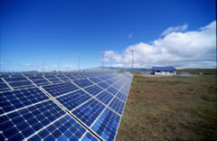 RCS-RDS, miscare - surpriza: investeste in energie solara