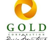 RMGC a dat milioane de lei pentru publicitate la televiziuni