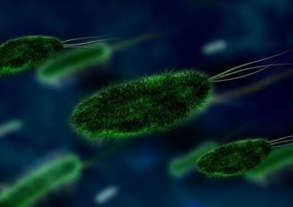 Ramanem fara antibiotice, avertizeaza Organizatia Mondiala a Sanatatii