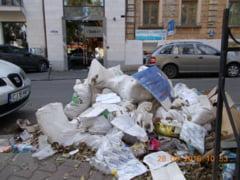 Rampele clandestine de gunoi rasar in Cluj ca ciupercile dupa ploaie - FOTO
