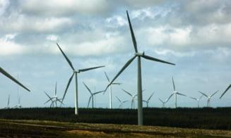 Razboiul energiei: Fara energia regenerabila a Scotiei, luminile Angliei s-ar stinge