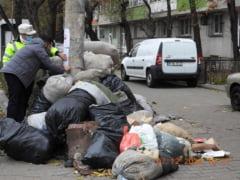 Razboiul lui Clotilde Armand cu firma de salubritate se incheie. Romprest va ridica gunoiul, dupa ce Primaria Sectorului 1 a platit din facturi