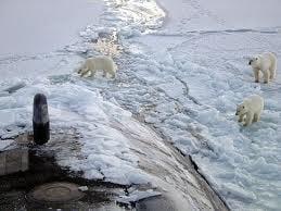 Razboiul rece pentru Polul Nord: Rusia Vs. Canada