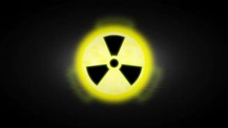Reactorul 2 de la Cernavoda a revenit la putere nominala