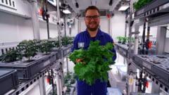 Recolta de salata, castraveti si ridichi in Antarctica