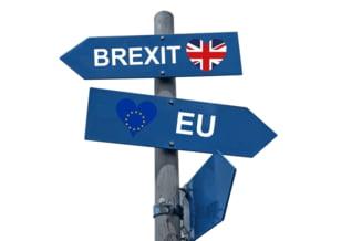 Regatul Unit refuza sa acorde ambasadorului Uniunii Europene la Londra un statut diplomatic veritabil