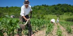 Rentierii agricoli invitati la sediul APIA