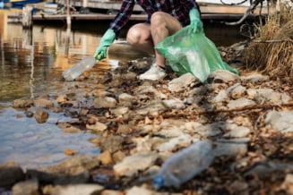 Respiram, bem si mancam plastic: 5 grame de plastic ajung saptamanal in corpul fiecaruia dintre locuiorii planetei