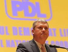 Revizuirea Constitutiei, respinsa de CCR - PDL: Antonescu sa-si dea demisia