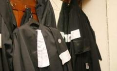 Revolutie in barouri - avocati mai putini, dar mai bine pregatiti!