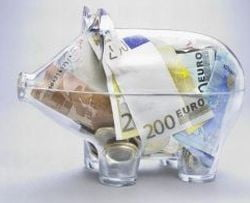 Rezervele valutare ale BNR s-au putea reduce cu 6 miliarde de euro in 2009