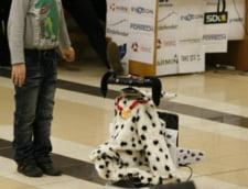 Robot-catel de supraveghere, creat de studenti romani - Interviu cu inventatorii