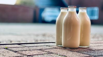 România a importat cu 4% mai puţin lapte faţă de anul trecut. Producţia de brânzeturi şi iaurturi este în scădere în 2021