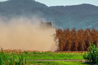 """Romania, de la """"granarul Europei"""", la """"franarul UE"""". Facem agricultura si producem """"praf"""""""