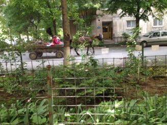 Romania, peste UK si Italia la nivelul de trai din zonele preponderent urbane
