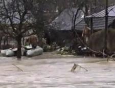 Romania, sub ape: Oameni luati de viitura, zeci de localitati afectate, scoli si drumuri inchise, familii evacuate
