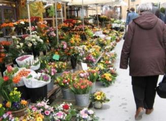 Romania a importat flori de 15,2 milioane euro, in primele opt luni din 2012