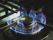 Romania a importat o cantitate de gaze naturale cu aproape 25% mai mare, in primele 5 luni ale anului. Productia interna, in scadere
