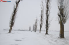 Romania inghetata: Un nou cod de polei inchide drumurile si tine avioanele la sol. Mii de oameni sunt in bezna