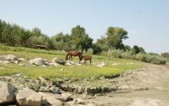 Romania lucrului prost facut. Faleza abandonata la Dunare care a fost convertita de localnici in groapa de gunoi