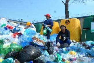 Romanii au colectat selectiv cu 60% mai multe deseuri in 2010
