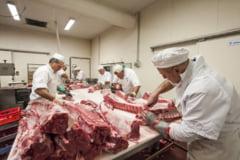 Romanii care lucreaza in Germania in industria carnii vor avea contract de munca direct cu angajatorul