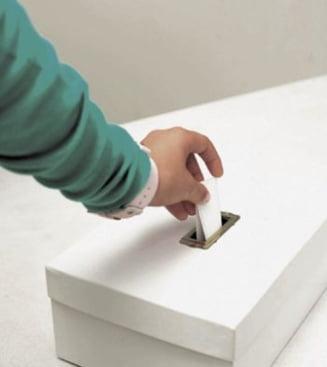 Romanii din strainatate ar putea vota prin posta