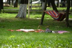 Romascanii, invitati la Picnic in Parcul Municipal, pe 18 august