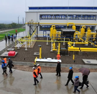 Romgaz este obligat sa dea in judecata ceilalti producatori de gaze, furnizorii, ANRE, Transgaz si pe propriii angajati