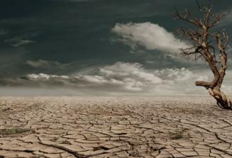 STUDIU Cvasitotalitatea fenomenului incalzirii globale, cauzat de activitati umane