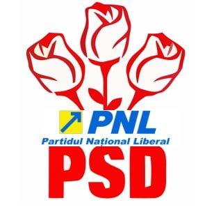 Sageata si trandafirii, in noua sigla pentru Alianta PSD-PNL-PC