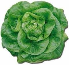 Salata verde curata organismul de toxine si stimuleaza digestia