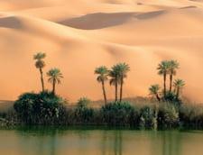 Salba de lacuri din Sahara - au apa de cinci ori mai sarata ca marea (Galerie foto)