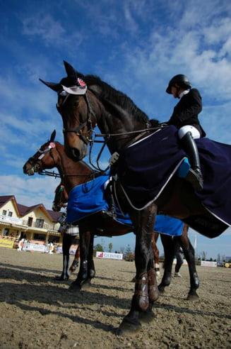 Salonul Calului - evenimentul anului pentru echitatia din Romania
