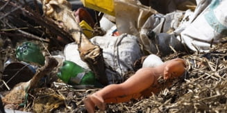 Sambata:Ampla actiune de ecologizare a raului Olt
