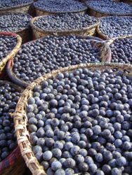 Sanatate cu fructe exotice