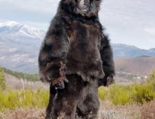 Sarbatoarea Ursului